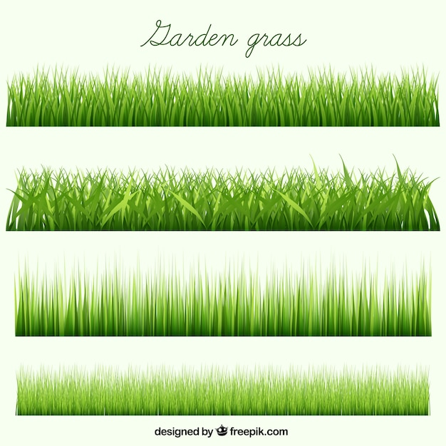 Garden grass collection Free Vector