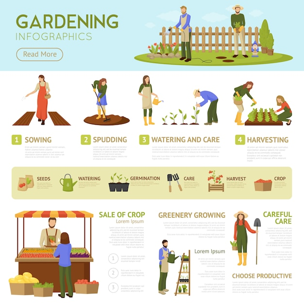 Gardening infographics template Free Vector