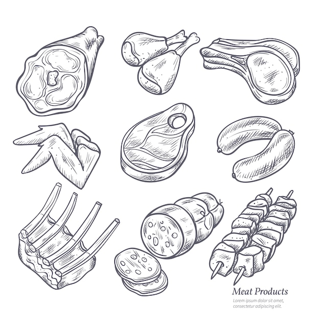 Gastronomic meat products sketches set Free Vector