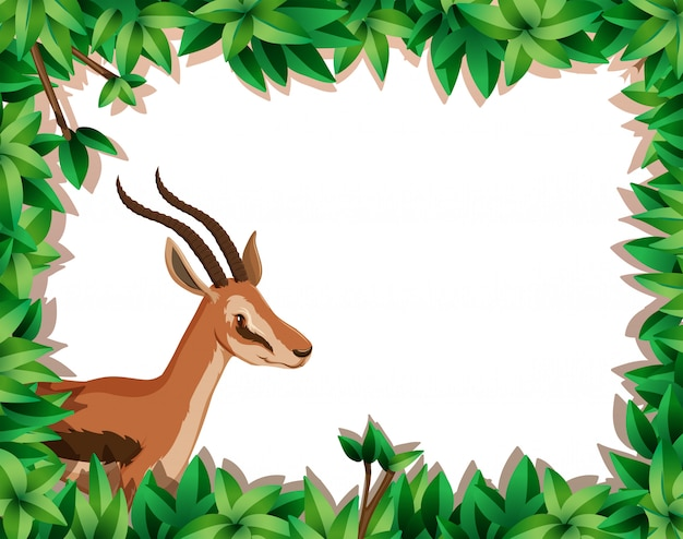 Gazelle in nature frame Premium Vector