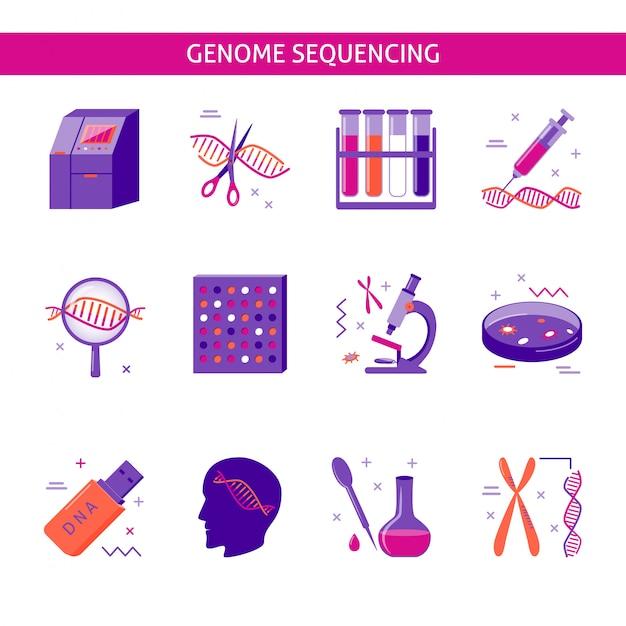 Набор иконок исследования генома Premium векторы