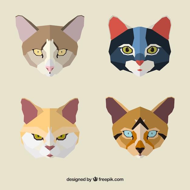 Geometric cat faces