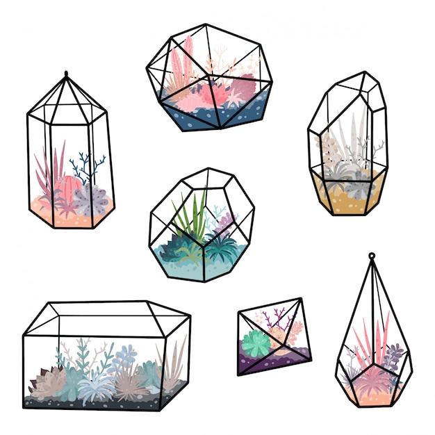 Geometric terrariums set with plants, succulent, cactus. scandinavian style home decor. glass crystal florariums isolated Premium Vector