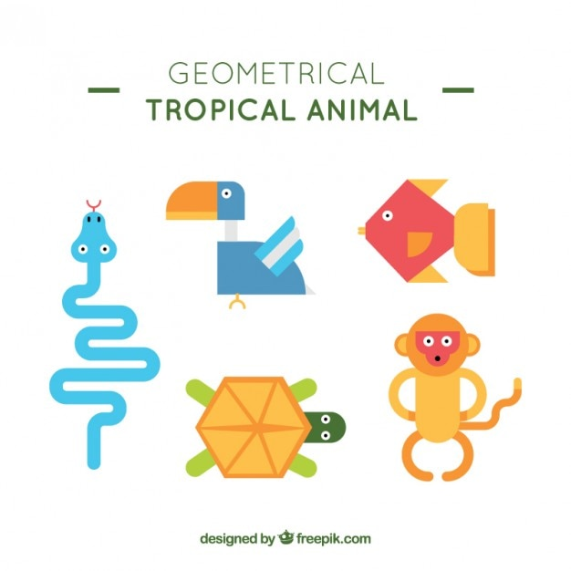 Geometrical wild animal collection