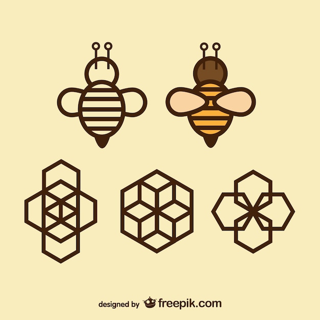 Geometry icons bee and honeycomb Free Vector
