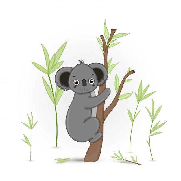 Gift postcard with cartoon animals koala. decorative floral background with branches and plants. Premium Vector