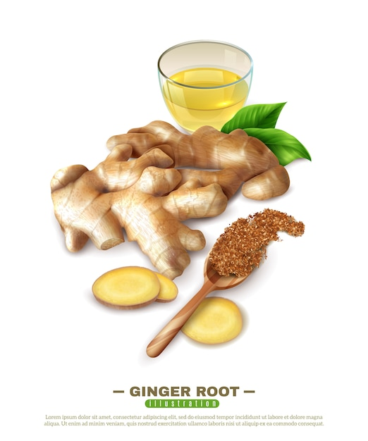 Ginger root 3d composition Free Vector