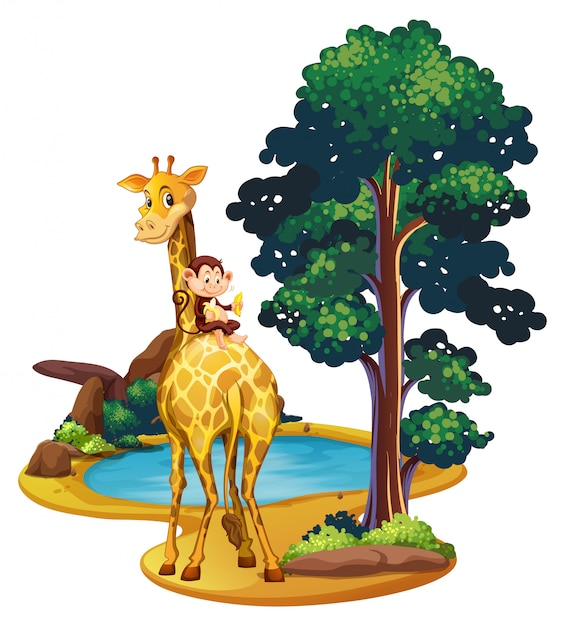 Giraffe and monkey by the pond Free Vector