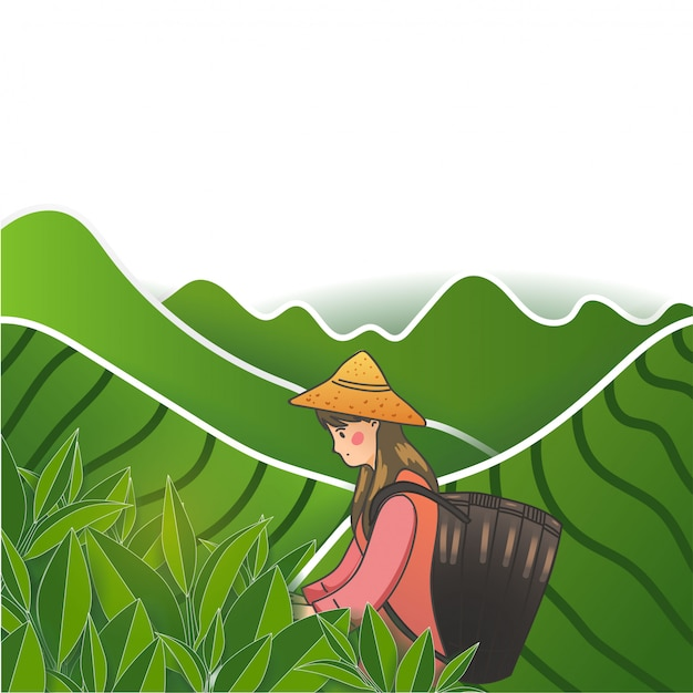 The girl in the green tea garden. Premium Vector