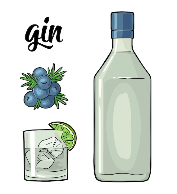 Glass and bottle of gin and branch of juniper with berries Premium Vector