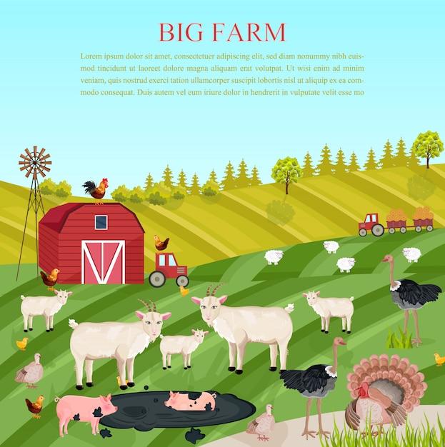 ヤギの豚と鶏の動物 Premiumベクター