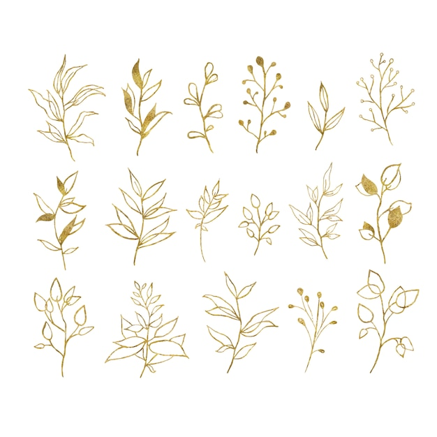Gold tropical leaves isolated on white Free Vector