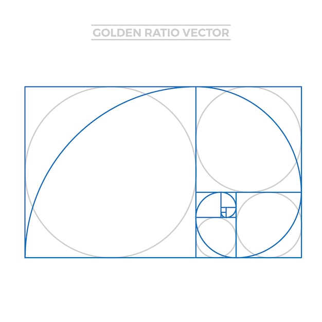 golden ratio template vector free download rh freepik com golden ratio circle vector golden ratio logo vector