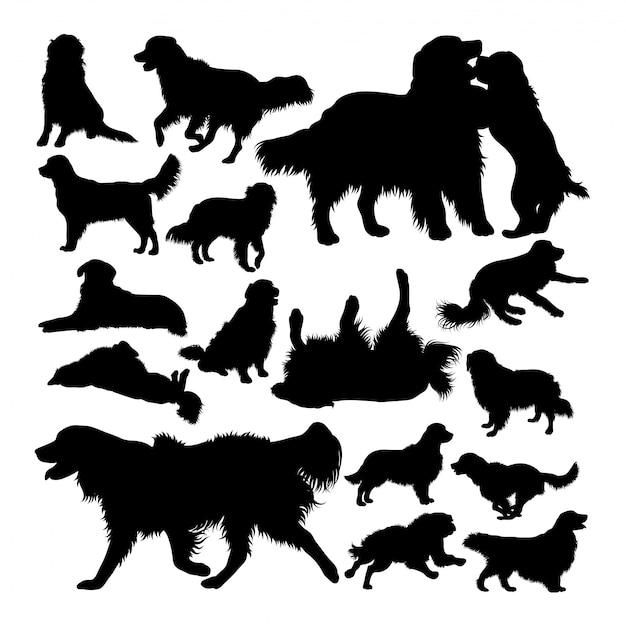 Golden retriever dog animal silhouettes Premium Vector