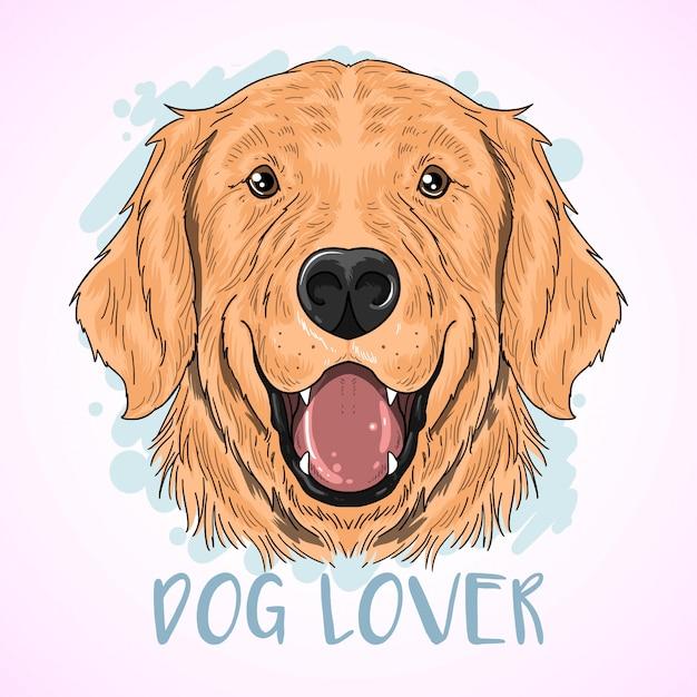 Golden retriever dog Premium Vector