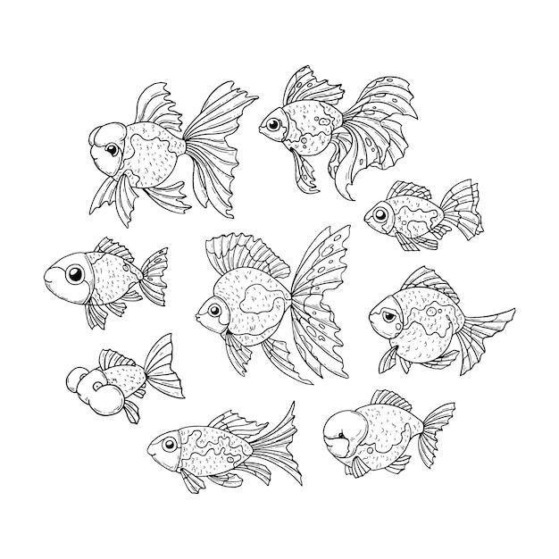 金魚セット Premiumベクター