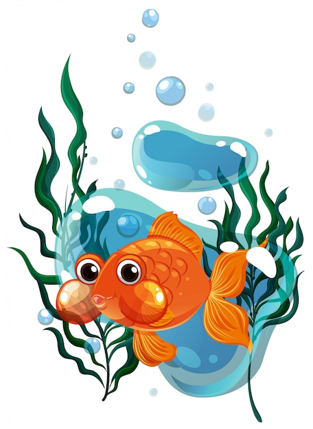 Goldfish swimming under the water Free Vector