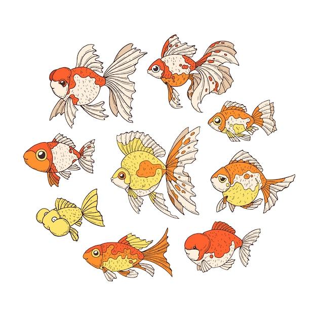 金魚。 Premiumベクター