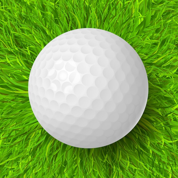 Golf Ball On Grass Vector Free Download