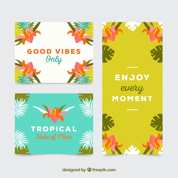 Good vibes tropical card collection Free Vector