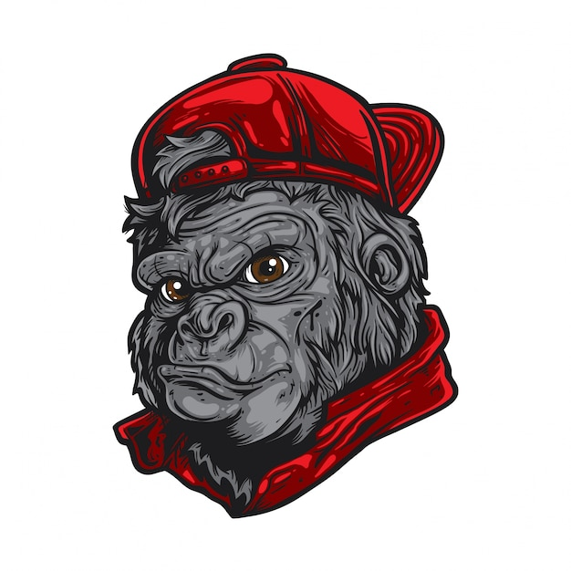 Gorilla Wearing Red Hat Vector   Premium Download