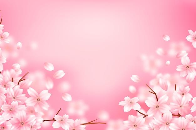Gradient sakura flower copy space background Free Vector