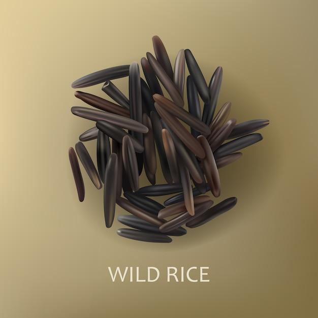 Зерна дикого черного риса Бесплатные векторы