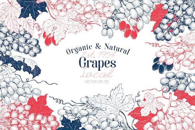 Grape berry background. hand drawn vector fruit illustration on chalk board. engraved style retro botanical Premium Vector