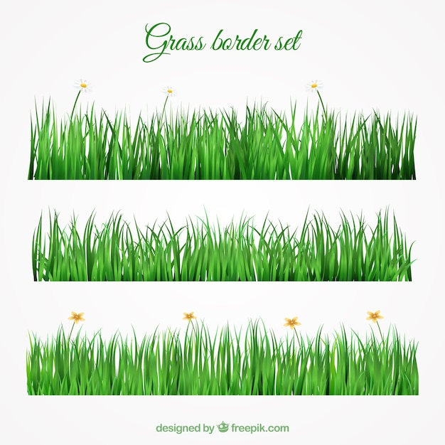 Grass border set in realistic design vector free download for Best grasses for borders