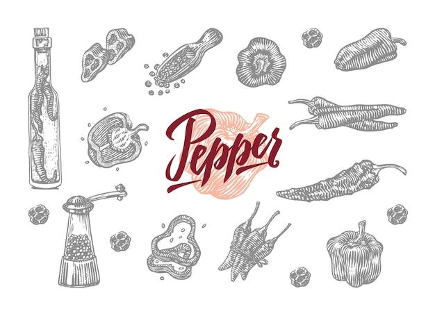 Campana e peperoncino incisi grigi in diverse forme e adattamenti Vettore gratuito