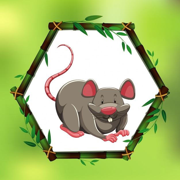 Gray rat in bamboo frame Free Vector