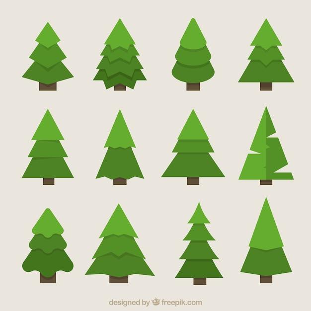 Great geometric fir trees in green tones Free Vector