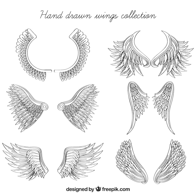 Great pack of hand-drawn wings Free Vector
