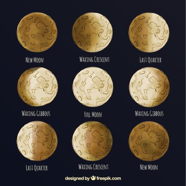 Great phases of the moon Free Vector
