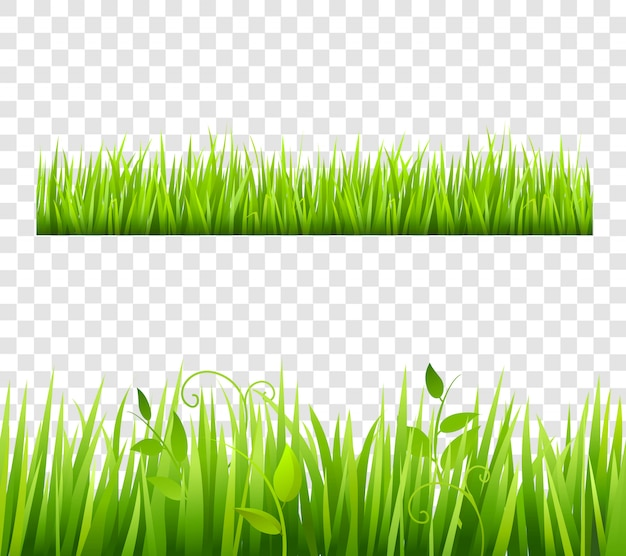 Green and bright grass border tileable\ transparent with plants