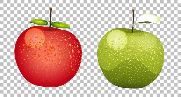 녹색과 빨간색 사과 현실적인 격리 무료 벡터