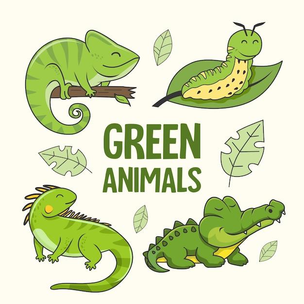 Green animals cartoon iguana chameleon crocodile caterpillar alligator Premium Vector