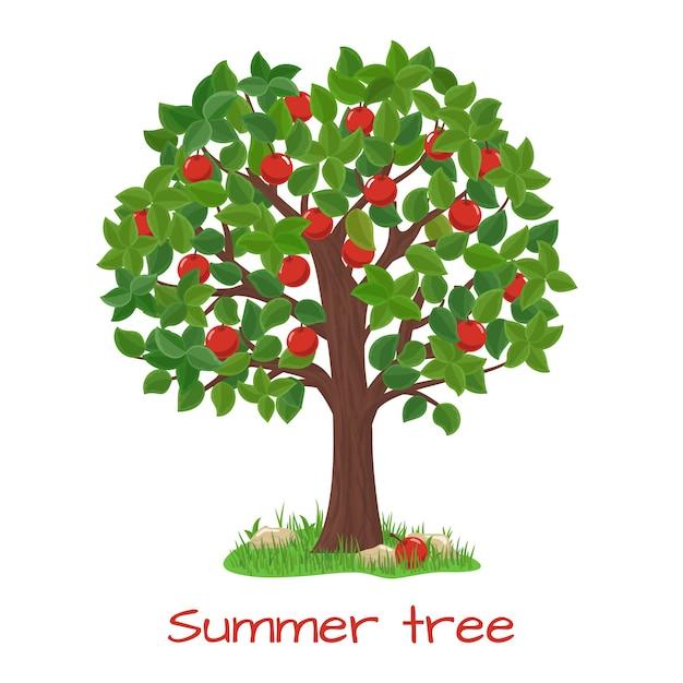 青リンゴの木。夏の木。ネイチャーガーデン、収穫と枝、ベクトル図 無料ベクター