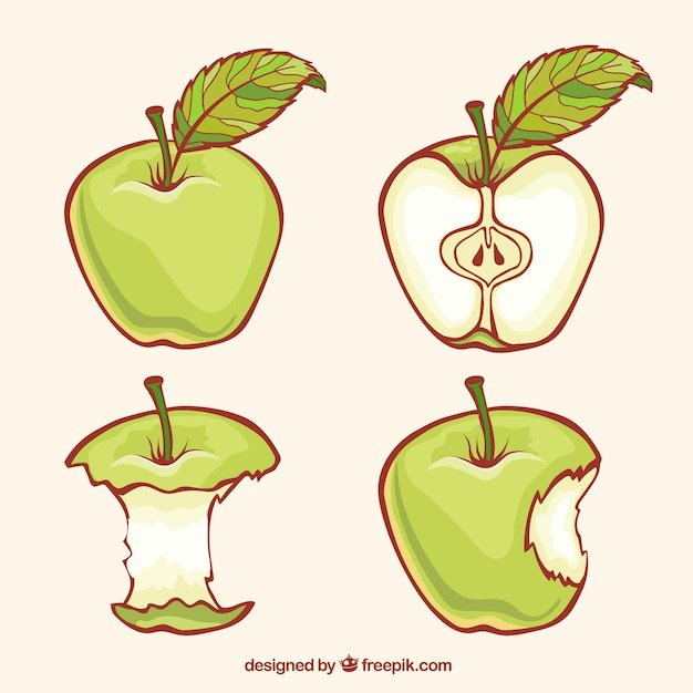 Green apples illustration Free Vector