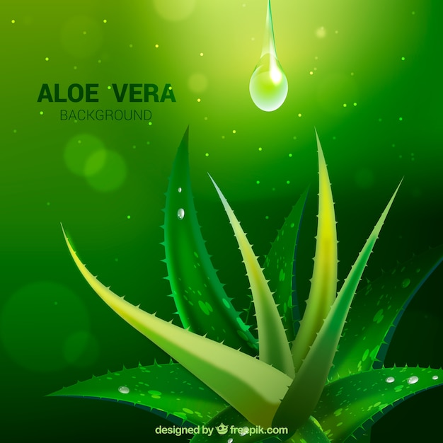 Green background with aloe vera and drops Free Vector