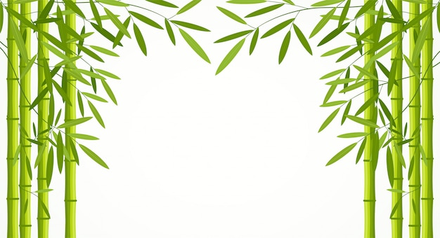 Green bamboo stems with leaves isolated on white background. Premium Vector
