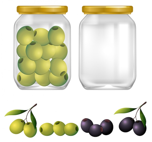 Green and black olives in jar Premium Vector
