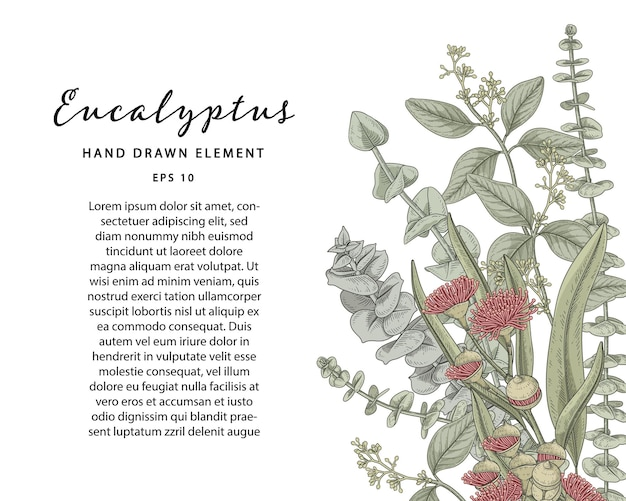 Green botanical hand drawn illustration with sample text template Premium Vector