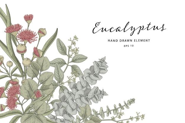Green botanical illustration Premium Vector