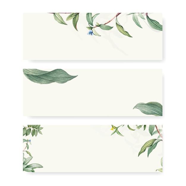 Green botanical leaves background design Free Vector