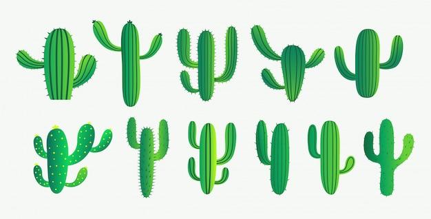 녹색 선인장과 다육 식물 세트 무료 벡터