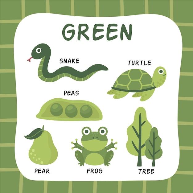 英語で設定された緑色と語彙 無料ベクター