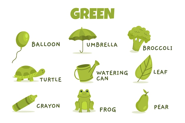 Green color with vocabulary pack in english Free Vector