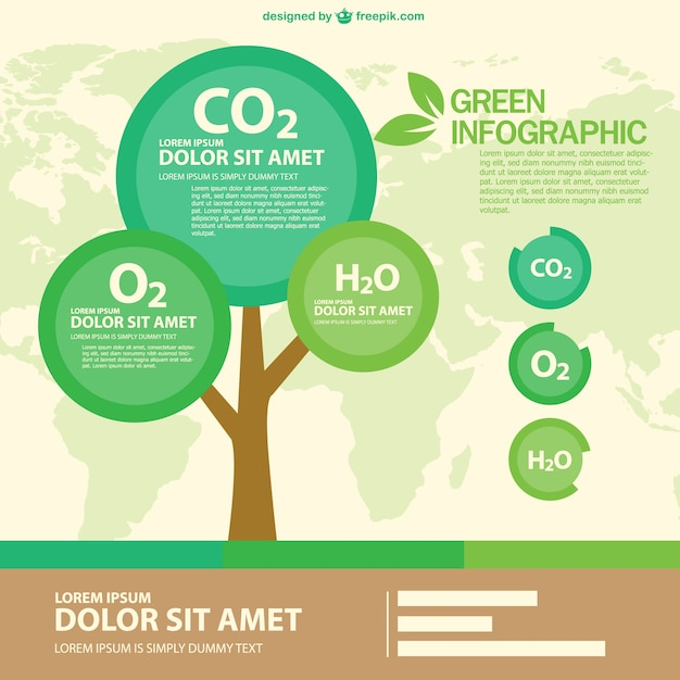Green eco infographic with a round tree Free Vector