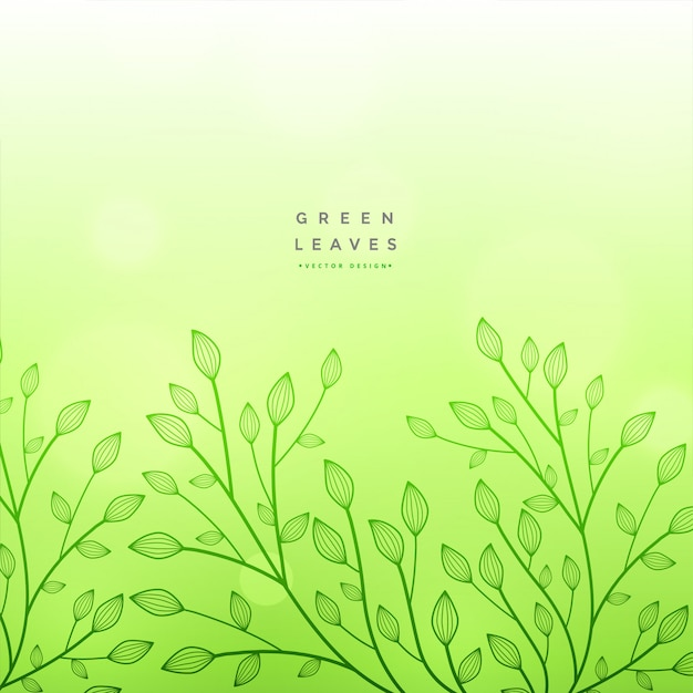 Green floral beautiful design background Free Vector